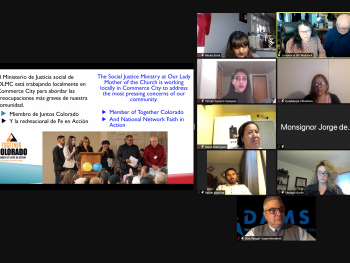 screenshot of the Zoom meeting